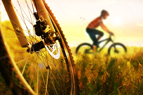 bicycle_nature_560