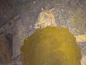 Amphipolis dig reveals amazing mosaic floor